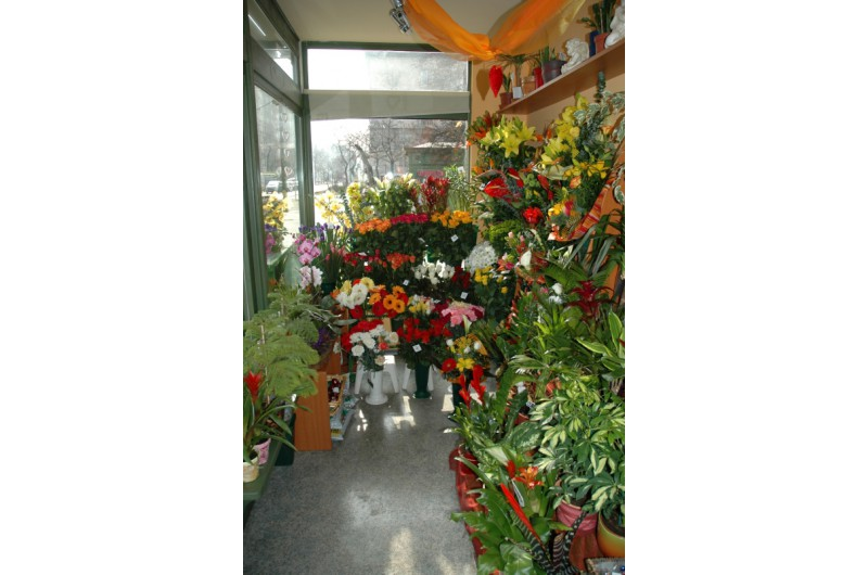 AD-15 Virág árusító pavilon